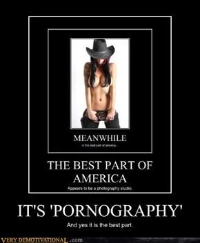 IT'S 'PORNOGRAPHY'