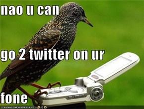 nao u can  go 2 twitter on ur fone
