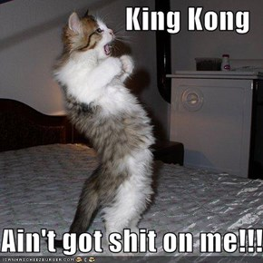 King Kong  Ain't got shit on me!!!