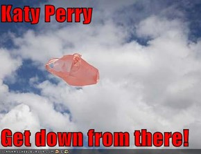 Katy Perry  Get down from there!