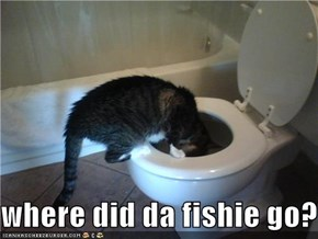 where did da fishie go?