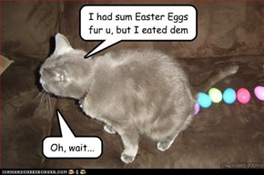 Happy Easter hooman!!