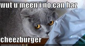 wut u meen i no can haz  cheezburger