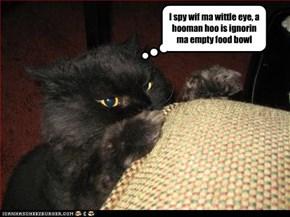 I spy wif ma wittle eye, a hooman hoo is ignorin ma empty food bowl