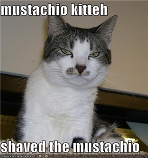 mustachio kitteh  shaved the mustachio