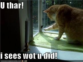 U thar!  i sees wot u did!