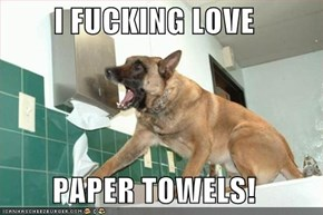I FUCKING LOVE  PAPER TOWELS!