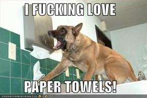 I FUCKING LOVE  PAPER TOWELS!