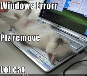 Windows Errorr Plz remove Lol cat