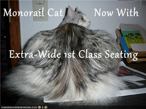 Monorail Cat           Now With     Extra-Wide 1st Class Seating