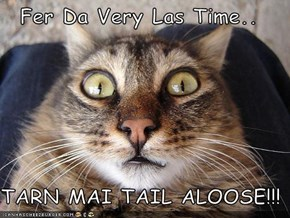 Fer Da Very Las Time..  TARN MAI TAIL ALOOSE!!!