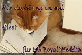 Ai'z studyin up on mai   eticat               fur teh Royal Weddin