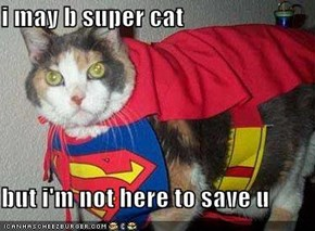 i may b super cat  but i'm not here to save u