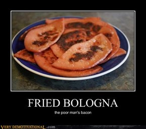 FRIED BOLOGNA