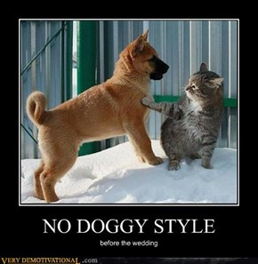 NO DOGGY STYLE