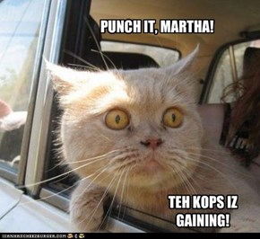 PUNCH IT, MARTHA!