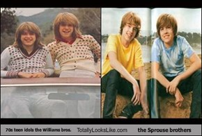70s teen idols the Williams bros. Totally Looks Like the Sprouse brothers