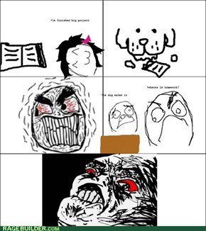 Homework D: