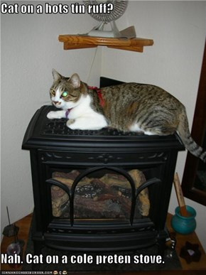 Cat on a hots tin ruff?  Nah. Cat on a cole preten stove.