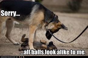 They said 'fetch', so...