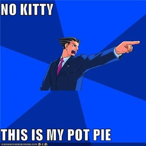 NO KITTY   THIS IS MY POT PIE