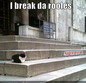 I break da rooles