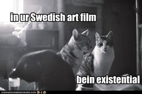 in ur Swedish art film