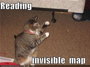 Reading  invisible  map