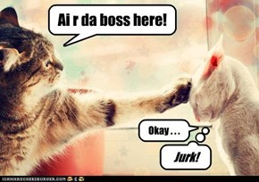 Ai r da boss here!
