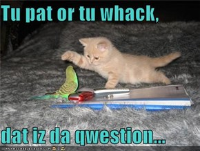 Tu pat or tu whack,  dat iz da qwestion...