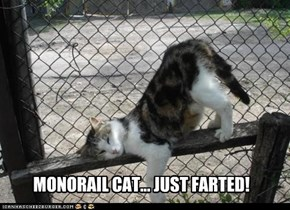 Monorail cat ripped one.