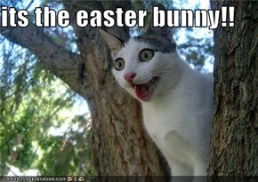 its the easter bunny!!