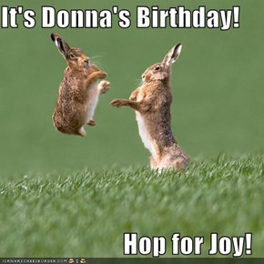It's Donna's Birthday!  Hop for Joy!