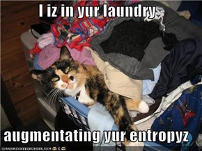 I iz in yur laundry  augmentating yur entropyz