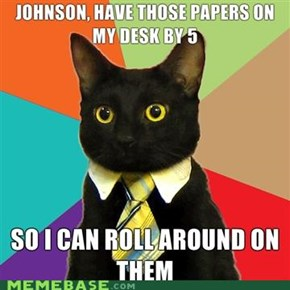 Damn it, Johnson