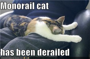 Monorail cat  has been derailed