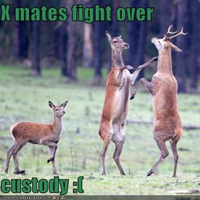 X mates fight over  custody :(
