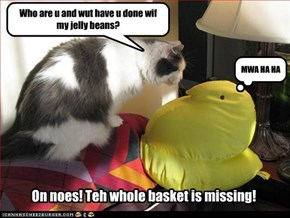 On noes! Teh whole basket is missing!
