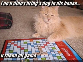 i no u didn't bring a dog in dis house...  u ruend mi game