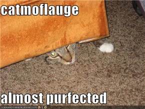 catmoflauge  almost purfected
