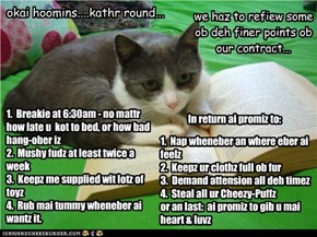 Hoomin/Kitteh Contract