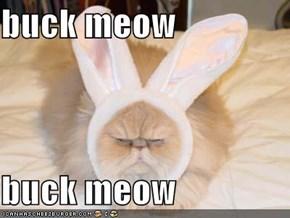 buck meow  buck meow