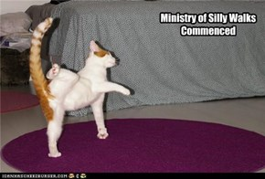 Ministry of Silly Walks Commenced