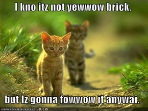 I kno itz not yewwow brick,     but Iz gonna fowwow it anywai.