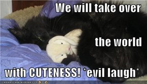 We will take over  the world  with CUTENESS! *evil laugh*
