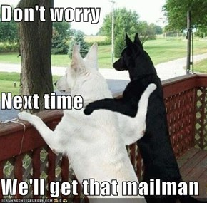 Don't worry Next time We'll get that mailman