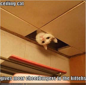 ceiling cat  gives moar cheezburgers to the kittehs.