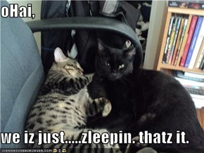 oHai,  we iz just.....zleepin. thatz it.