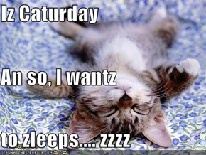 Iz Caturday An so, I wantz to zleeps.... zzzz