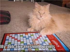 My 'Lolcat' earns me 8 points